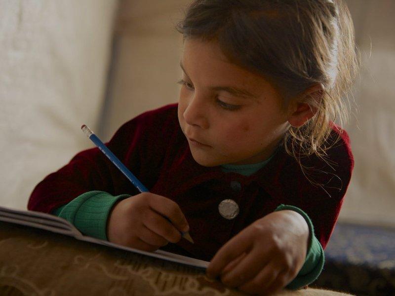 Brindar Educación en Emergencias